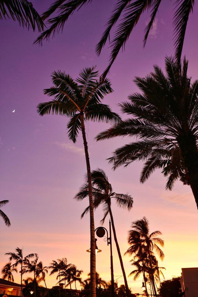 Road Trip en Floride en 9 jours : que voir, que faire ?
