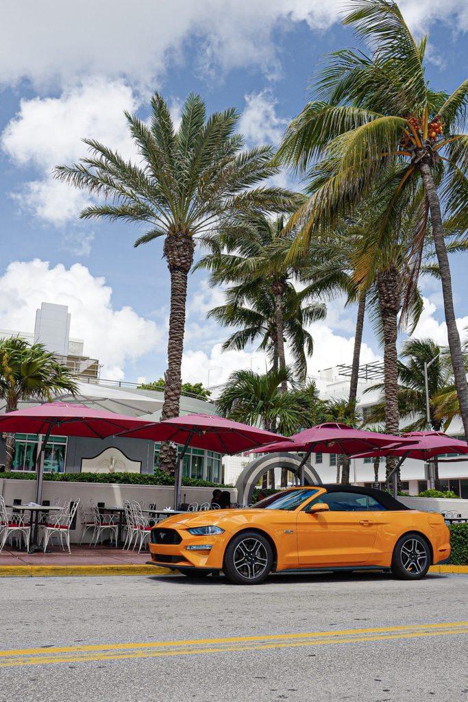 2 jours à Miami & Miami Beach : bonnes adresses, que voir, que faire ?