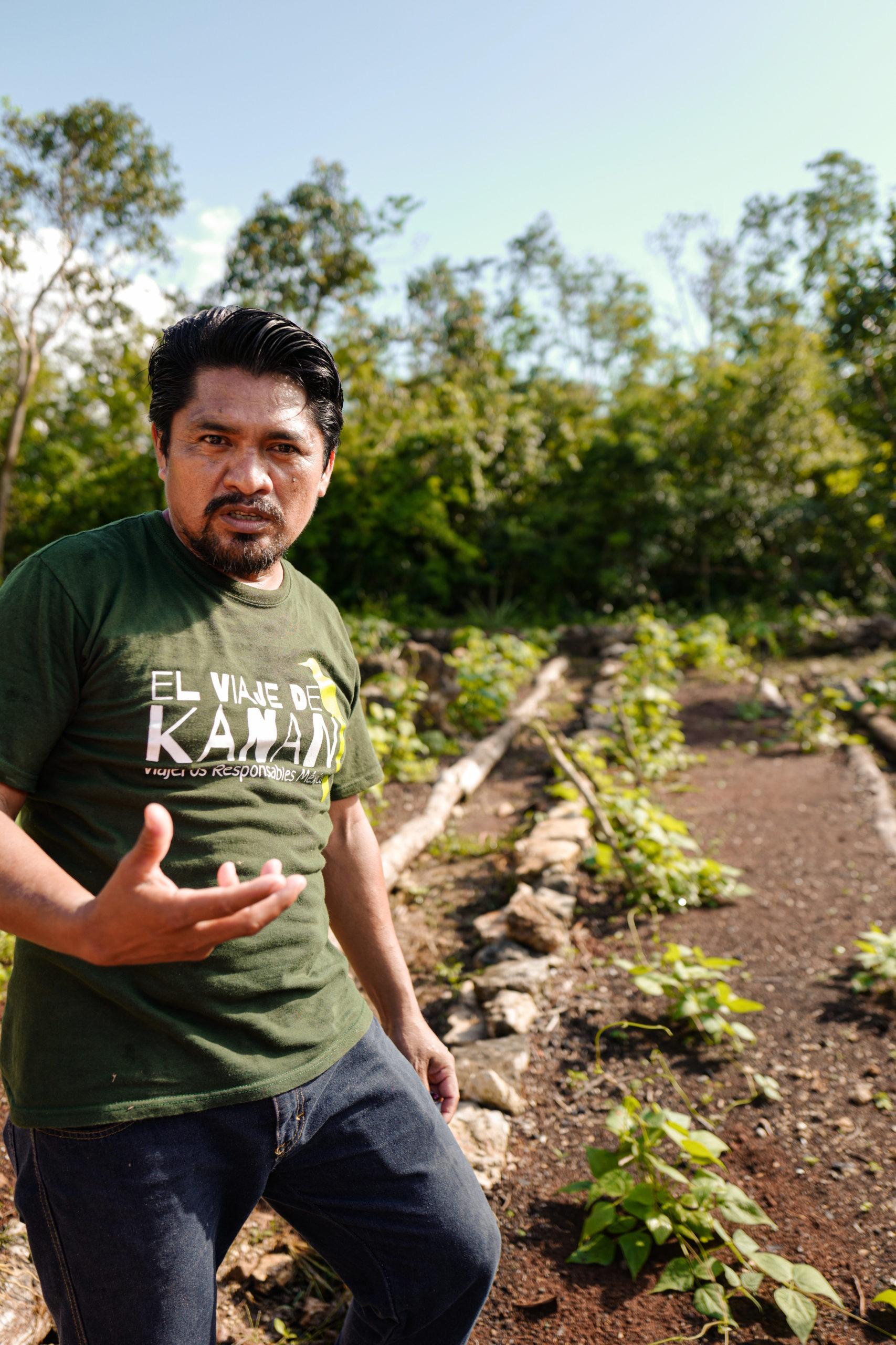 agriculture-mexique