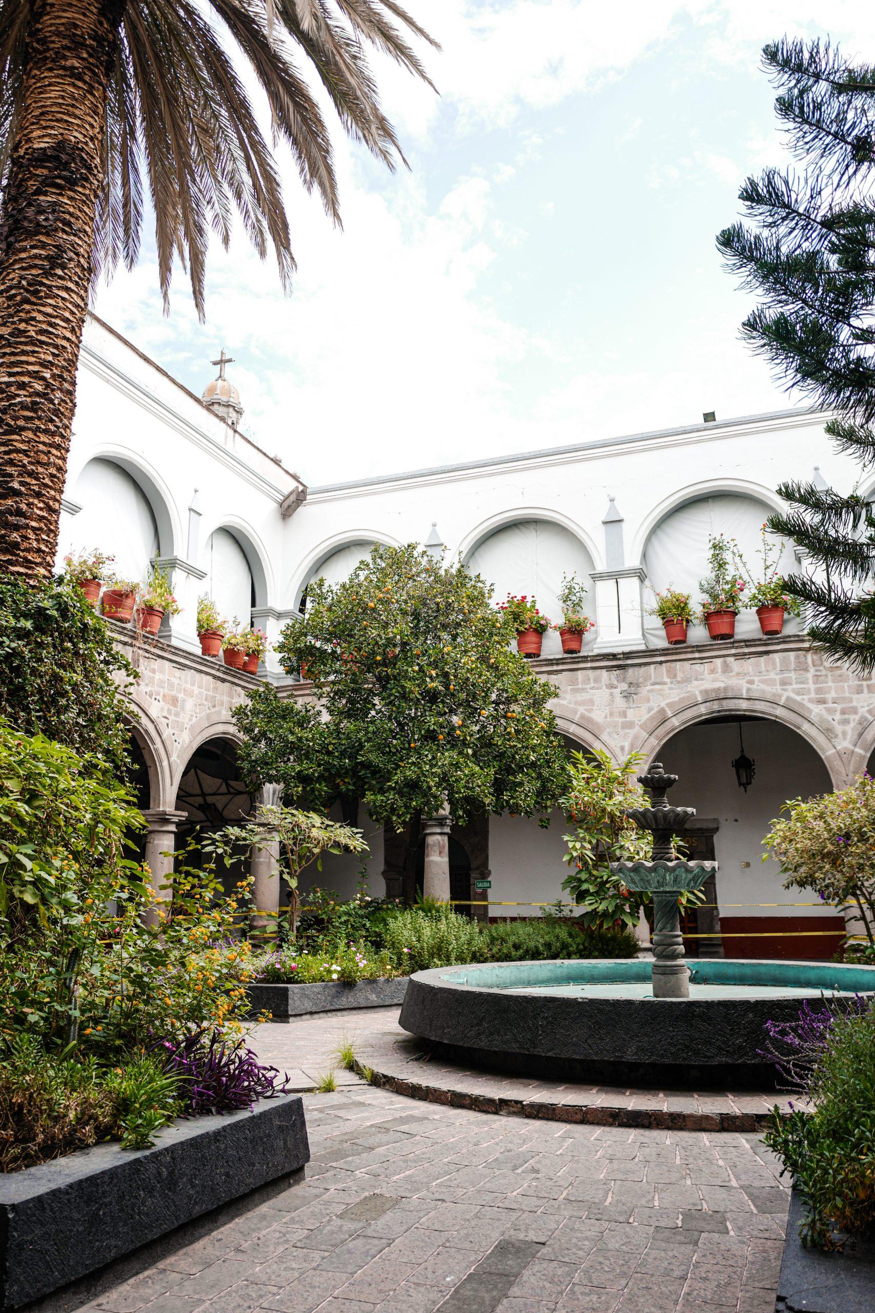 coyoacan-jardin