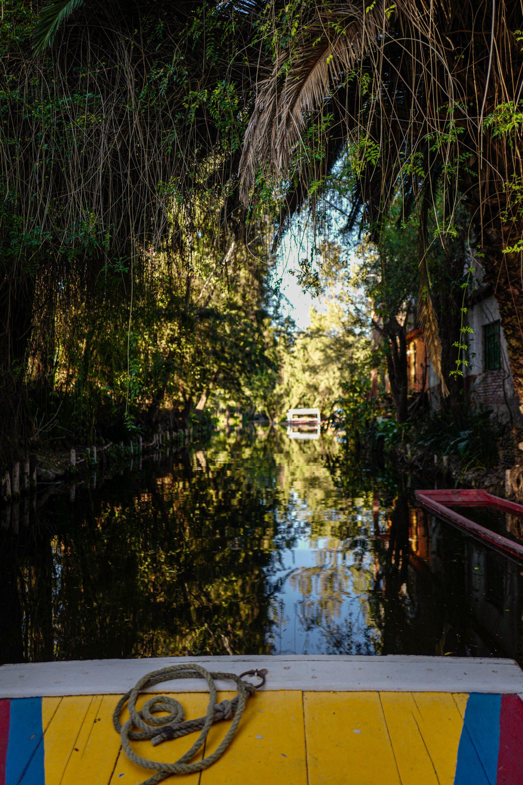 jardins-mexico-city