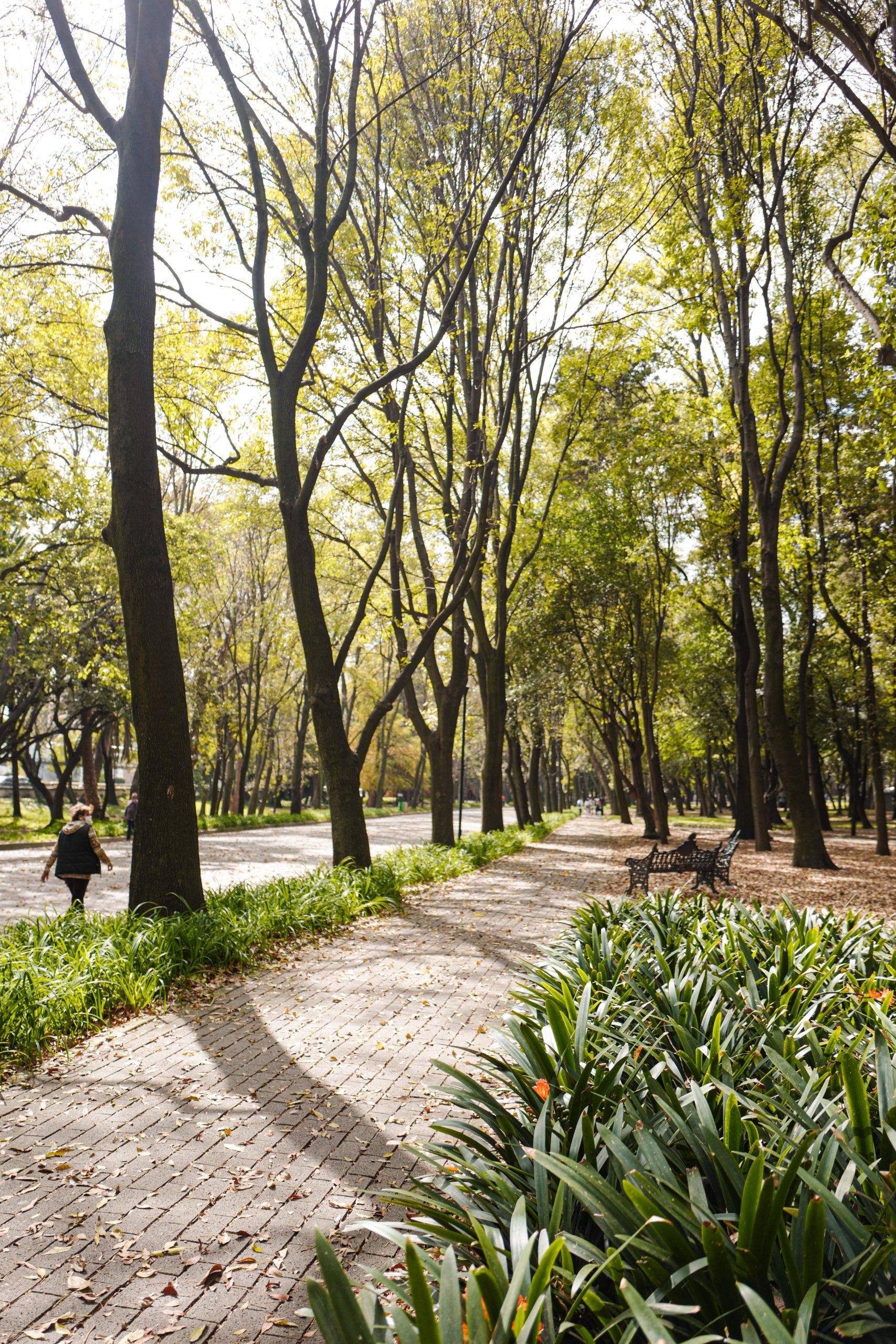 parc-de-chapultepec