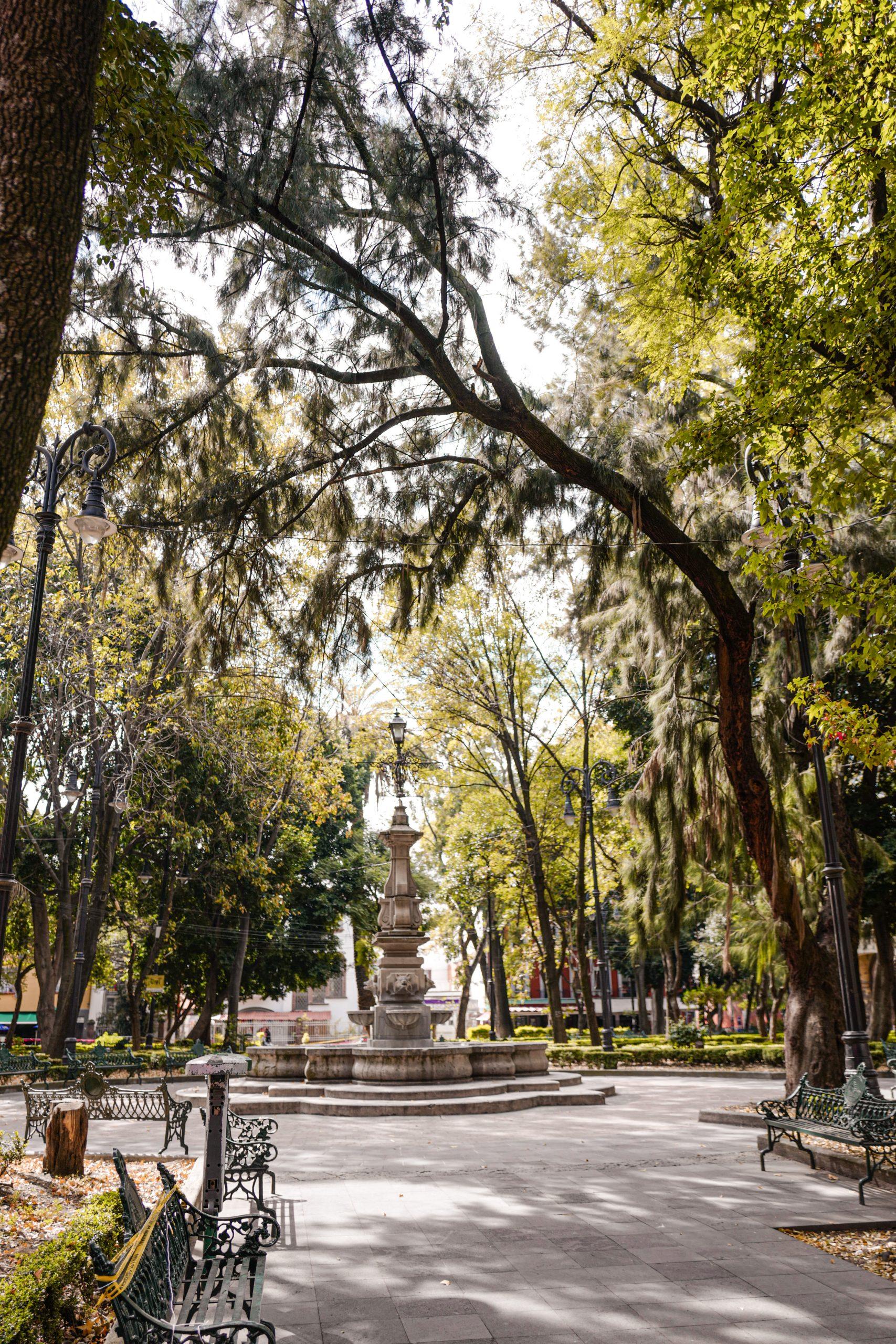 plaza-jardin-hidalgo